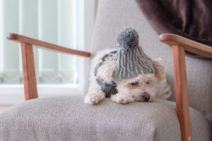 エコ&暖房費節約! 室内の寒さ対策におすすめの防寒グッズ5選